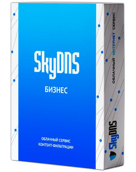 Сетевой экран SkyDNS Бизнес. 55 лицензий на 1 год